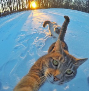 Manny selfie