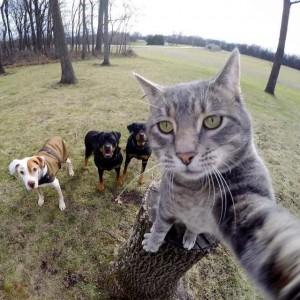 Manny selfie amigos