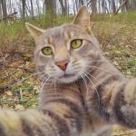 Manny-selfie-bosque-cover