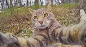 Manny selfie en el bosque