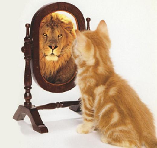 rey-leon-espejo